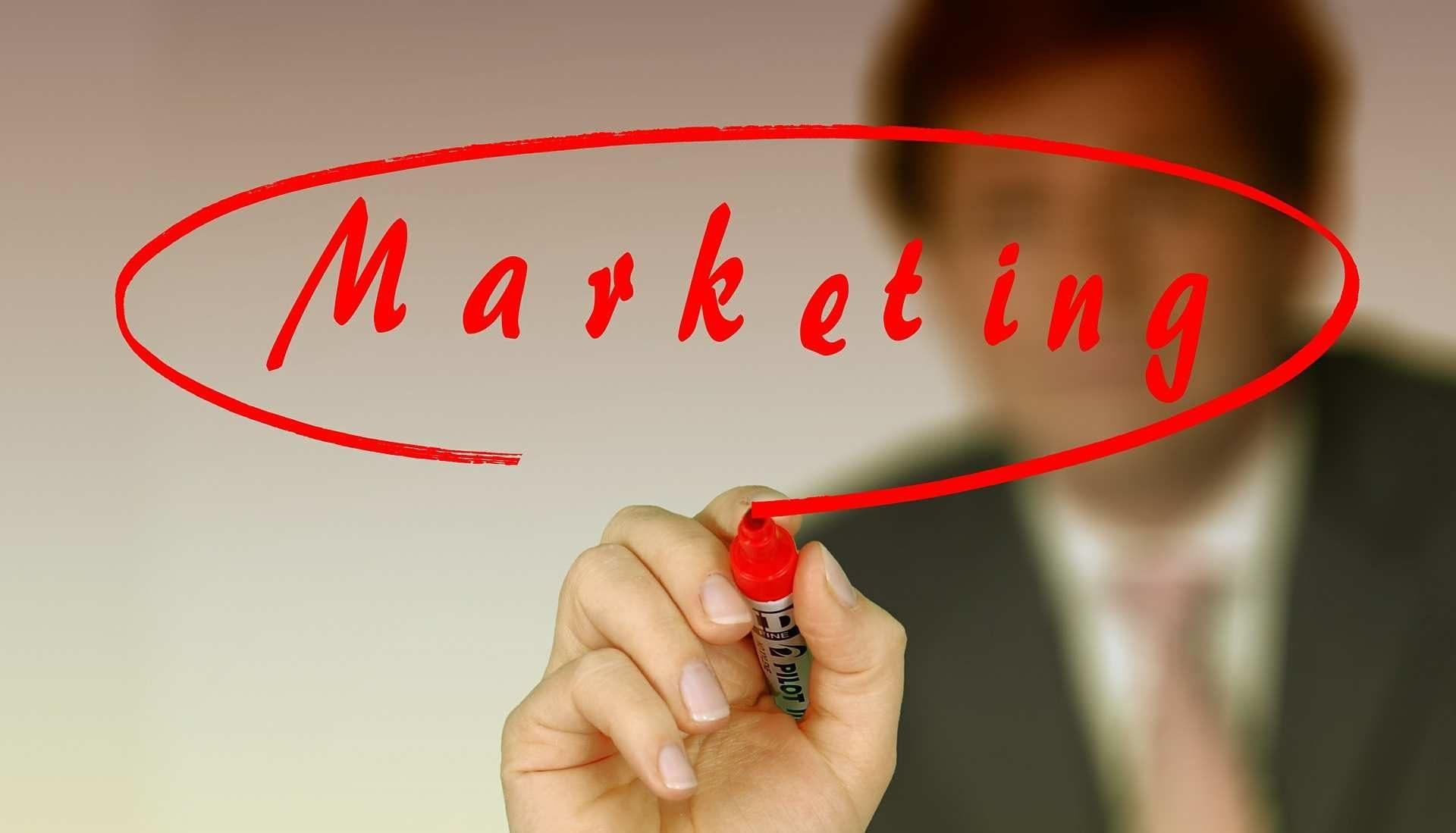 Doradztwo, marketing, biznesplany